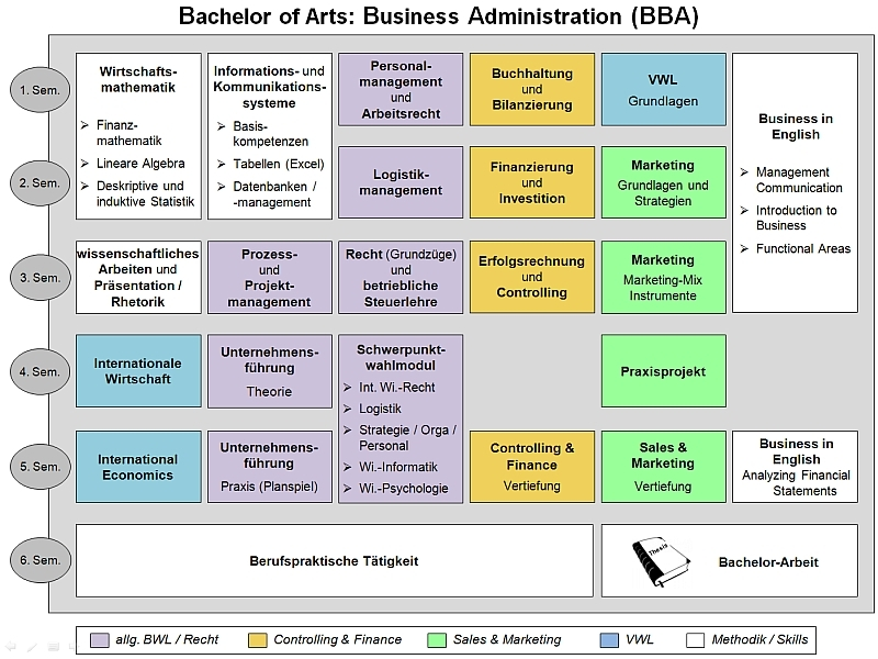 Curriculum Studiengang Business Administration (B.A.)
