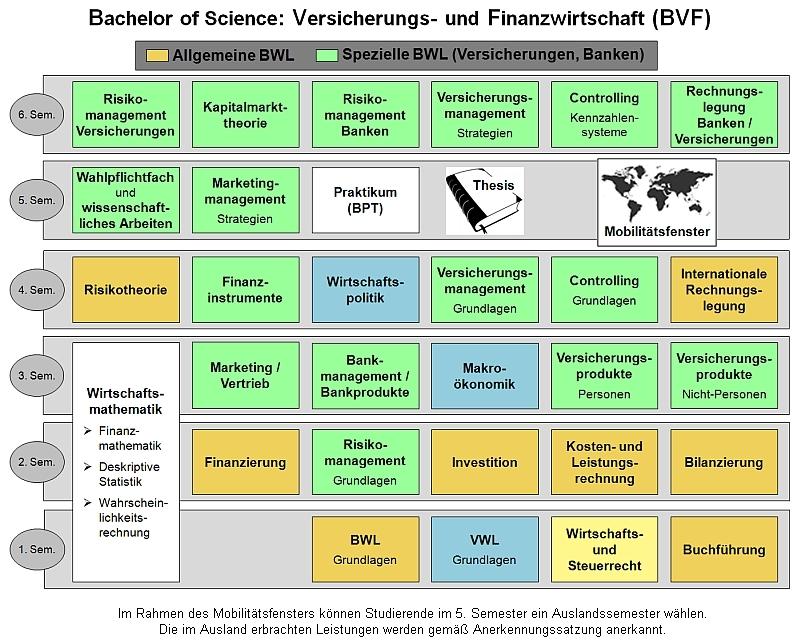 Curriculum Studiengang Versicherungs- und Finanzwirtschaft (B.Sc.)