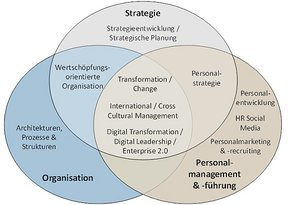 Schaubild: Projekt- und Forschungsschwerpunkte von Prof. Dr. Thorsten Petry